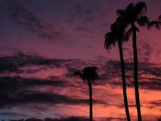 Free My Evening View From The Driveway Royalty Free Stock Photo - 95697715
