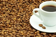 Free Coffee Stock Images - 9572574