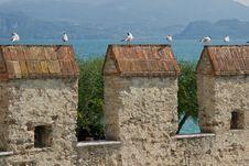 Free Sea Gulls Onto Castle Pinnacles Stock Image - 9575121
