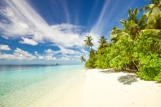 Free Secluded Sandy Beach Stock Photo - 95798500