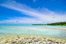 Free Sandy Beach On Coastline Stock Photography - 95798502