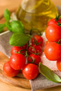 Free Tomatoes With Basil And Olive Oil Stock Photos - 9582963