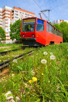Free Dandelions And Tram In The City Royalty Free Stock Image - 9581316