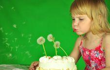 Free Pie With Dandelions Stock Image - 9582271