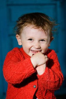 Free Smiling Boy  With Dishevelled Hair Royalty Free Stock Images - 9582439