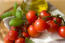 Tomatoes With Basil And Olive Oil Royalty Free Stock Photo