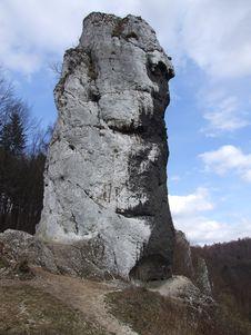 Limestone Rock, Hercules  Club Stock Photos