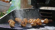 Free Barbeque Stock Image - 9585711