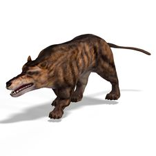 Dangerous Dinosaur Andrewsarchus With Clipping Stock Image