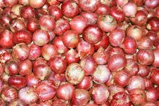Fresh Organic Red Bulb Onion For Sale At A Market Royalty Free Stock Images