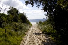 Free Trail To The Beach Stock Images - 9589424