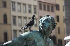 Free Statue, Sculpture, Monument, Pigeons And Doves Royalty Free Stock Photography - 95823477