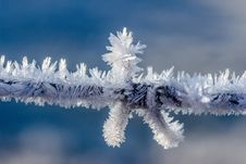 Free Frost, Freezing, Winter, Sky Royalty Free Stock Image - 95829006