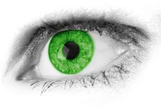 Free Eye, Green, Eyebrow, Close Up Stock Photography - 95829102