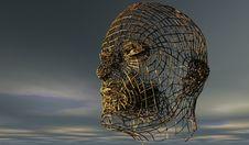 Free Head, Organism, Sky, Skeleton Royalty Free Stock Image - 95831126
