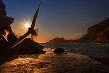 Free Sky, Sea, Sunrise, Sunset Royalty Free Stock Images - 95832309
