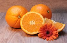 Free Fruit, Valencia Orange, Produce, Bitter Orange Royalty Free Stock Photography - 95832517