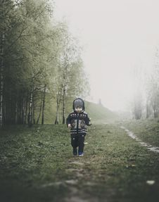Free Boy Walking In Mist Stock Images - 95868414