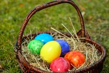 Free Easter Egg, Grass, Easter, Egg Royalty Free Stock Image - 95889686