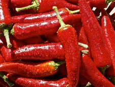 Free Natural Foods, Chili Pepper, Bird S Eye Chili, Vegetable Royalty Free Stock Image - 95890506