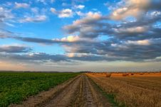 Free Sky, Field, Cloud, Crop Stock Images - 95893434