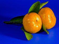 Free Clementine, Tangerine, Fruit, Citrus Stock Images - 95893864