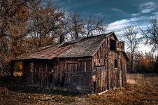Free House, Shack, Log Cabin, Tree Stock Images - 95899244