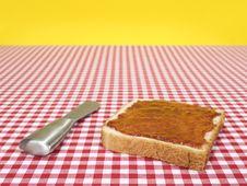 Free One Toast Royalty Free Stock Image - 9590196