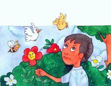 Free Garden Royalty Free Stock Image - 9591756