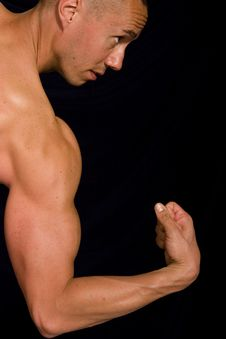 Free Muscular Male Stock Image - 9592351