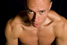 Free Muscular Male Royalty Free Stock Images - 9592379