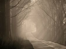 Free Wander Into The Unknown. Stock Image - 9593241
