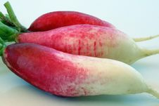 Free 3 Red & White Radishes Stock Images - 9593604