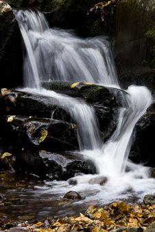 Free Autumn Stream Royalty Free Stock Photography - 9594477
