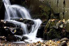 Free Autumn Stream Royalty Free Stock Photography - 9594577