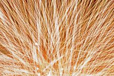Free Abstract Fireworks Stock Photography - 9594592