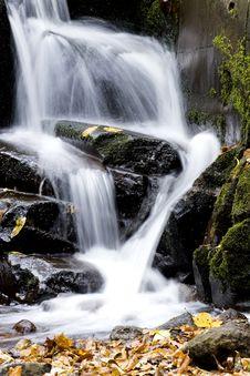 Free Autumn Stream Royalty Free Stock Image - 9594656