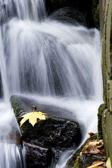 Free Autumn Stream Stock Images - 9594664