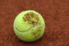 Free TENNIS BALL Stock Image - 9596701