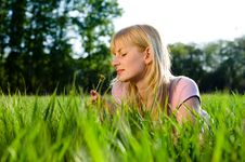 Free Girl Smells A Dandelion Royalty Free Stock Image - 9597826