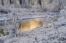 Free Snow, Winter, Freezing, Frost Royalty Free Stock Image - 95903876