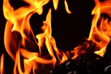 Free Flame, Fire, Heat, Orange Royalty Free Stock Photos - 95904188