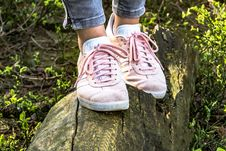 Free Footwear, Shoe, Grass, Tree Royalty Free Stock Images - 95904729