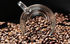 Free Coffee, Cocoa Bean, Jamaican Blue Mountain Coffee, Caffeine Stock Image - 95906551