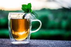 Free Drink, Cup, Pint Us, Beer Glass Royalty Free Stock Images - 95961649