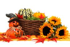 Free Halloween Harvest Decoration Stock Image - 95997071
