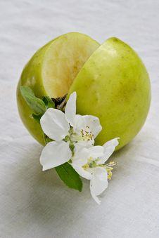 Life Of Green Apple Stock Photos
