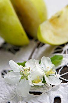 Free Life Of Green Apple Stock Photos - 963213