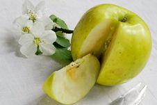 Life Of Green Apple Stock Photo