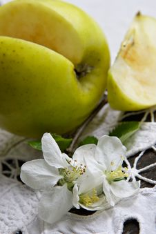 Life Of Green Apple Royalty Free Stock Images